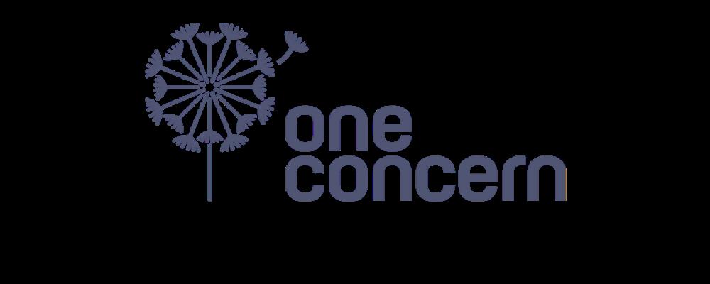 OneConcern